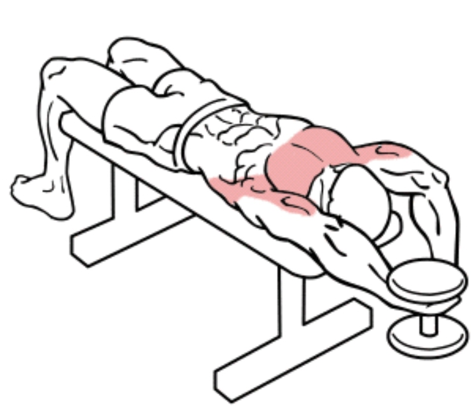 chest-workout
